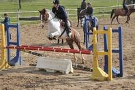 Stage cheval/poney à la semaine niveau Galop 3/4/5