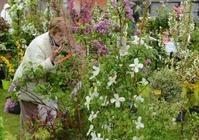 Festival des plantes nouvelles