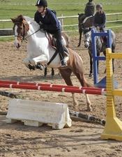 Centre equestre du Cheval Bleu