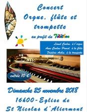 Concert téléthon SNA
